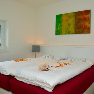 Ferienwohnung auf Norderney mit exklusiver Ausstattung